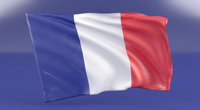 Curso de Francés C1