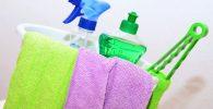 Limpieza y Puesta a Punto de Pisos y Zonas Comunes en Alojamientos. Mantenimiento y Limpieza en Alojamientos Rurales